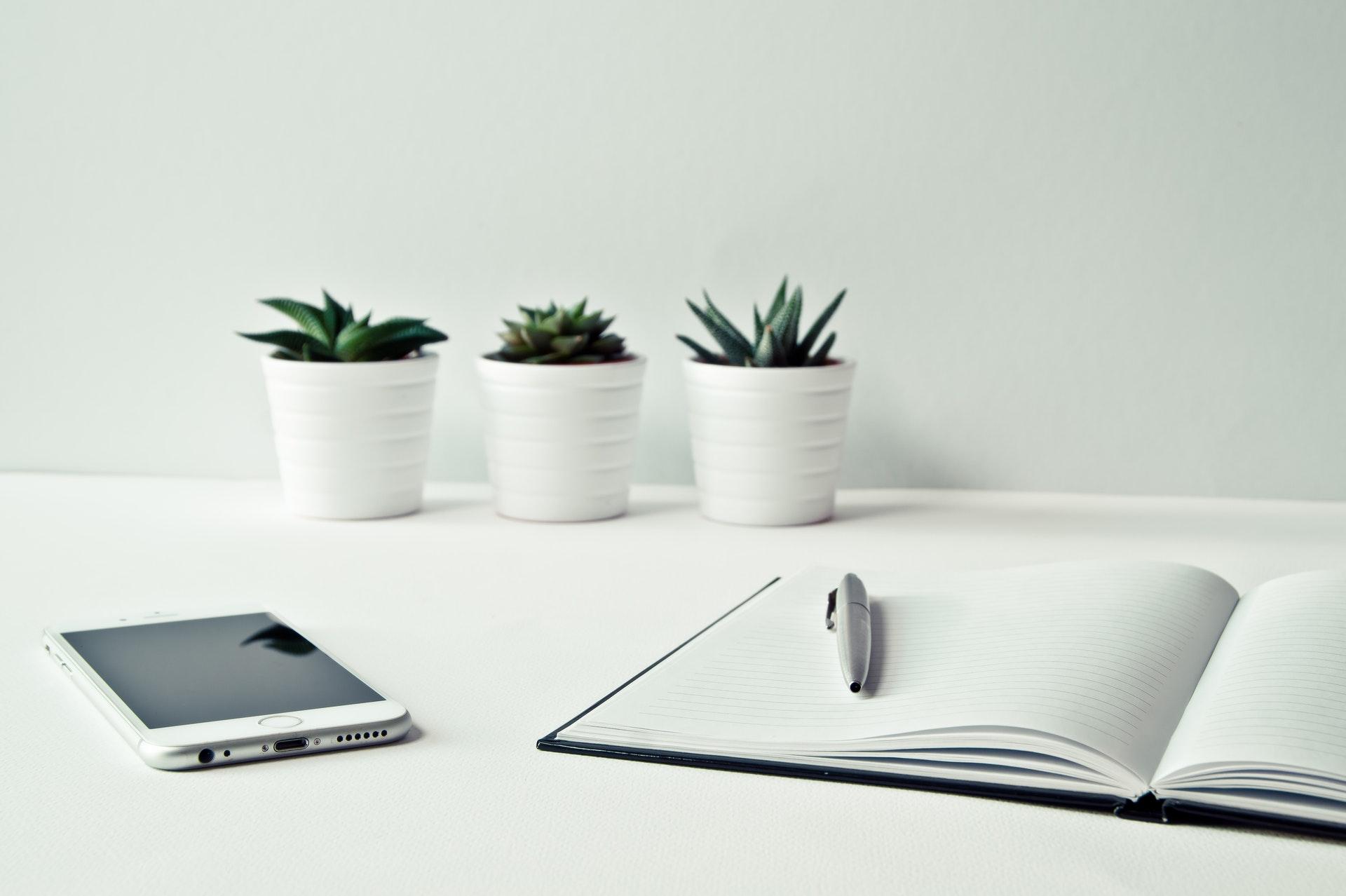 three-white-ceramic-pots-with-green-leaf-plants-near-open-796602.jpg